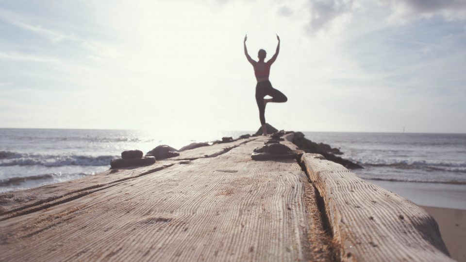 THE TRANSFORMATIVE POWER OF YOGA